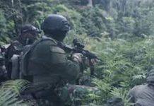 Baku Tembak Antara TNI-Polri vs KKB Papua